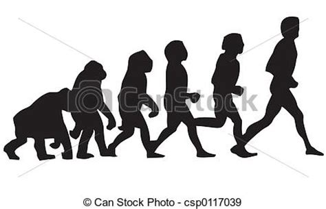 FREE Human Evolution Essay - ExampleEssays